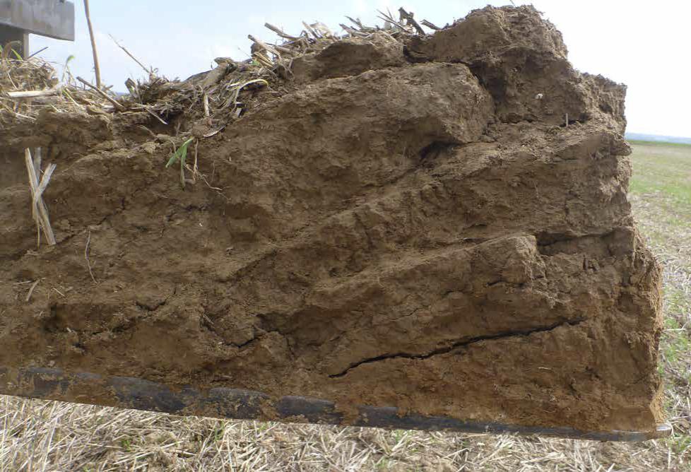 intérêt de la fissuration du sol